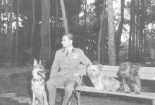 برابری شاه ایران و سگ آمریکایی